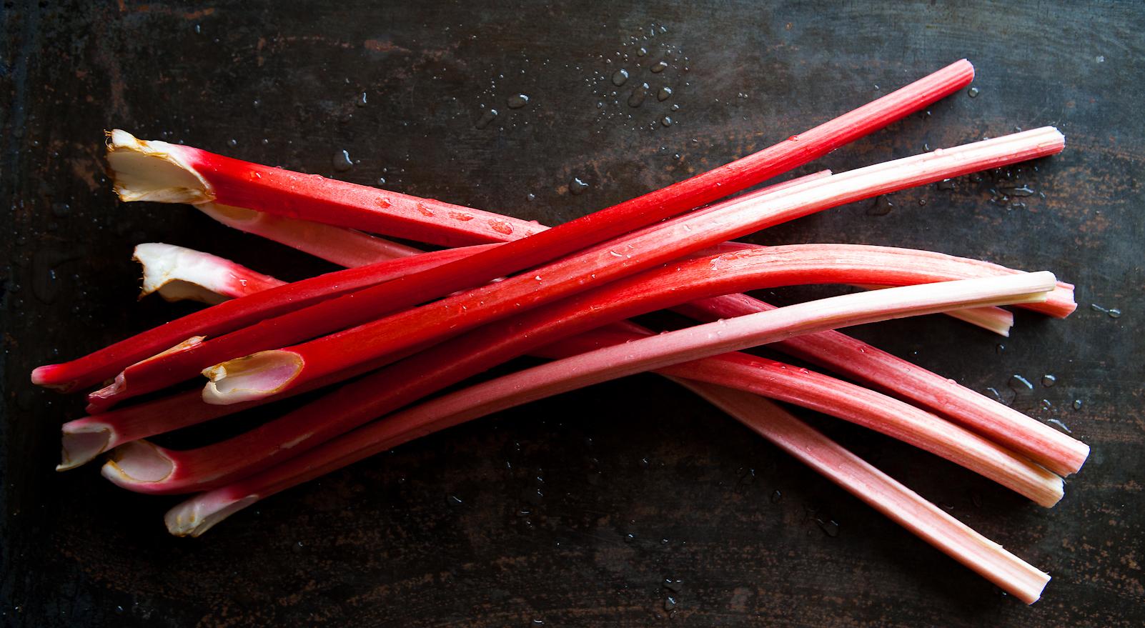 Rhubarb Tart | Food Photography | Carlisle, Cumbria